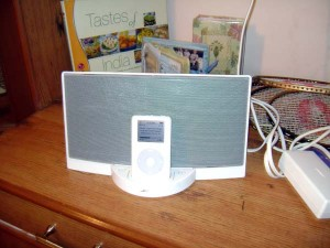 The offending Ipod